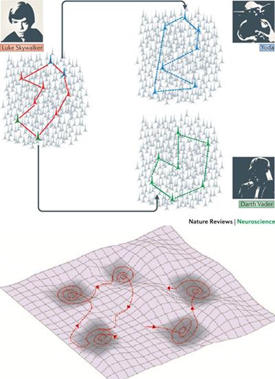 Deux exemples de paysages d attracteurs en neurobiologie - Paysage star wars ...